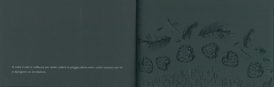 Il libro nero di tutti i colori, Cottin Menena e Faria Rosana, Gallucci, 2011