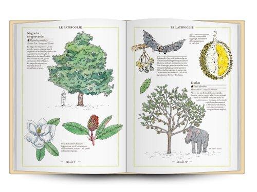 Inventario illustrato degli alberi, Virginie Aladjidi, Emmanuelle Tchoukriel, L'Ippocampo, 2012