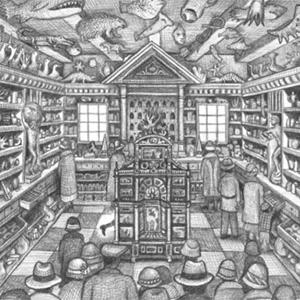 Le Wunderkammern di Brian Selznick, tra memoria e costruzione di sé