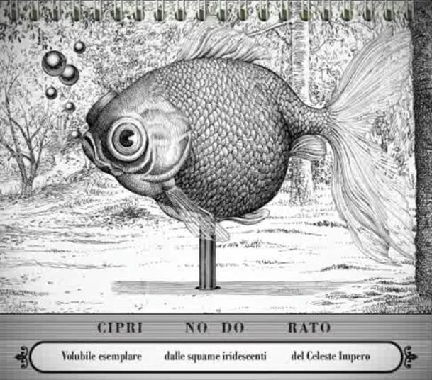 Bestiario universale del professor Revillod. Mirabolante almanacco della fauna mondiale, Miguel Murugarren. 2010, Logos